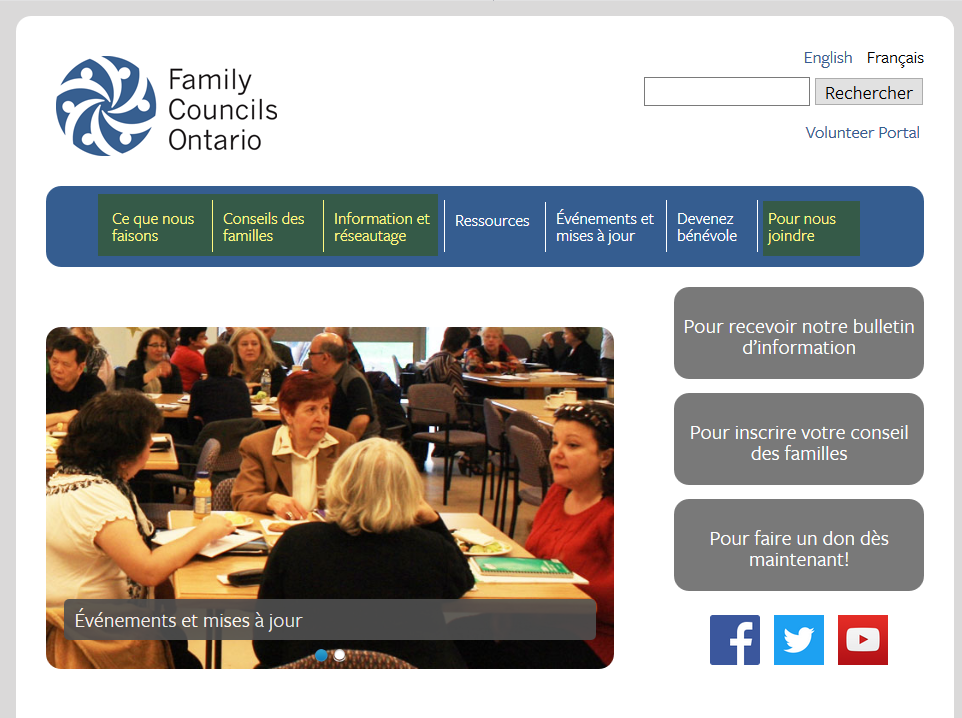 The general work scope of the Family Councils Ontario website update project included 4 sections.